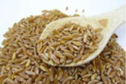 guide to ancient grains